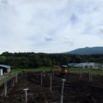 太陽光発電パネルの地上設置の様子です。
